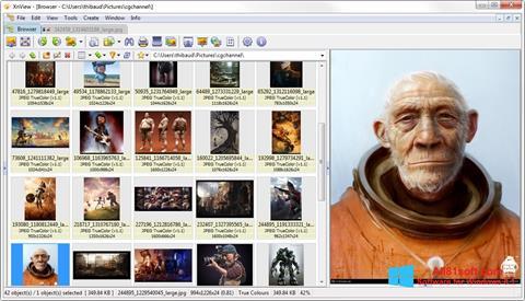 Снимка на екрана XnView за Windows 8.1