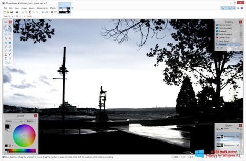 Снимка на екрана Paint.NET за Windows 8.1