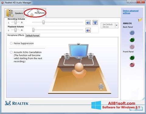 Снимка на екрана Realtek Audio Driver за Windows 8.1