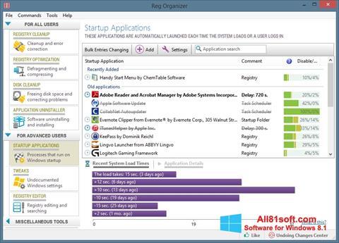 Снимка на екрана Reg Organizer за Windows 8.1