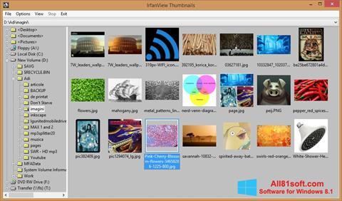 Снимка на екрана IrfanView за Windows 8.1