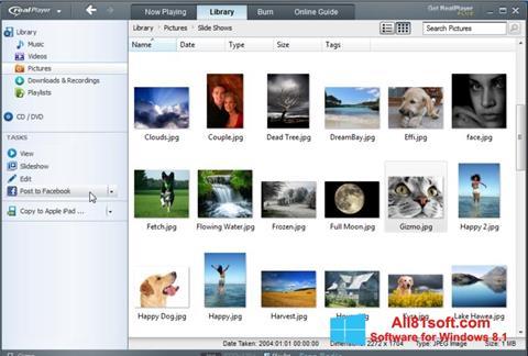 Снимка на екрана RealPlayer за Windows 8.1